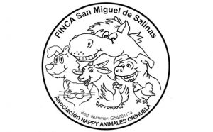 happy animales